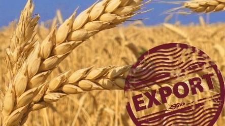 Українські агроекспортери відкрили вісім нових експортних ринків за півроку